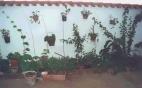 Casa rural Balcón de los Montes -  Badajoz