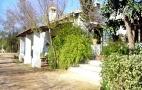 El Berrocal -  Sevilla