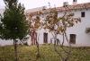 Casa rural El Camino - Casa rural Córdoba