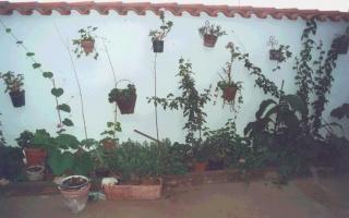 Casa rural Balcón de los Montes