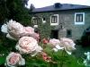 Casa Solariega de Cervantes - Hotel rural Lugo